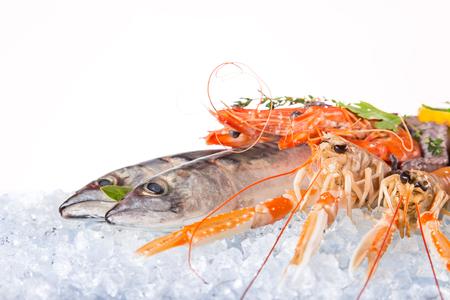 venta de mariscos y pescados congelados