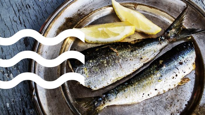 Pescado azul, todos los beneficios que tiene. Sardinas, salmón, atún, pez espada.